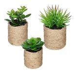 Plante grasse artificielle pot en corde