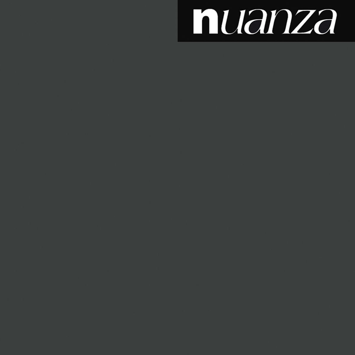 Peinture noir mat multi supports Nuanza 2.5l