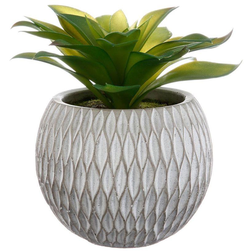 Plante pot ciment