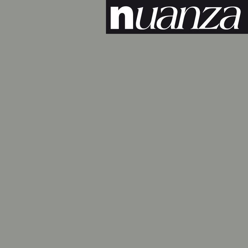 Peinture titane satin multisupports Nuanza 2.5l