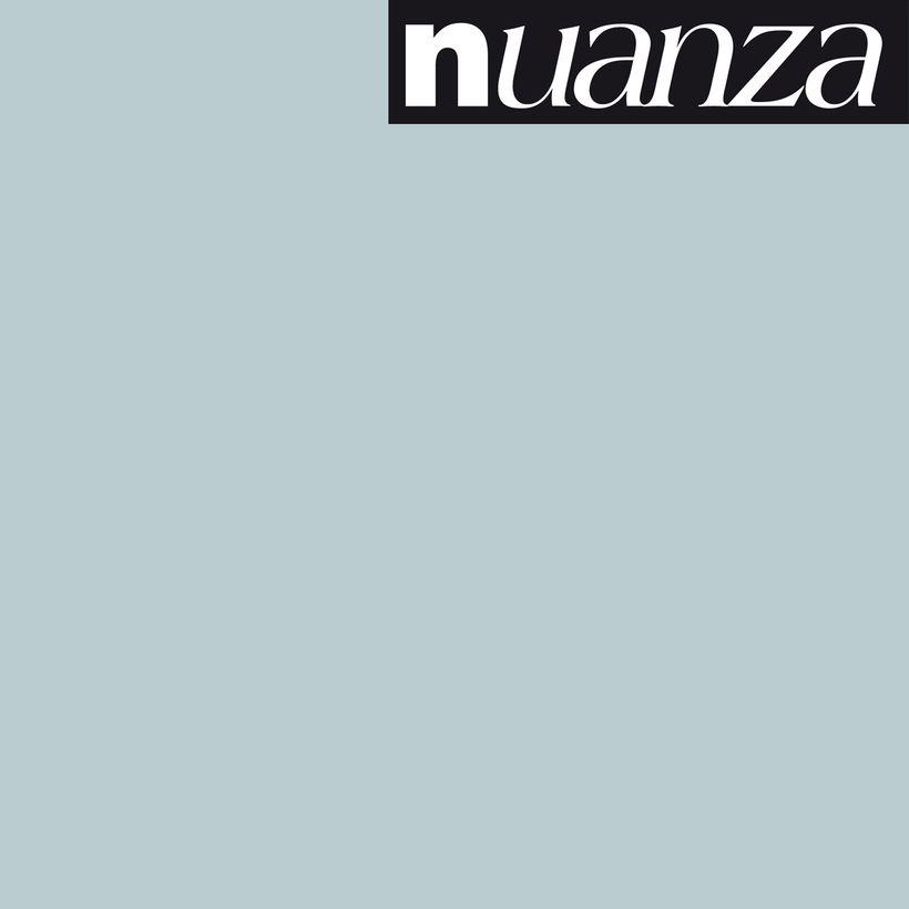 Peinture polaire satin multisupports Nuanza 0.5l