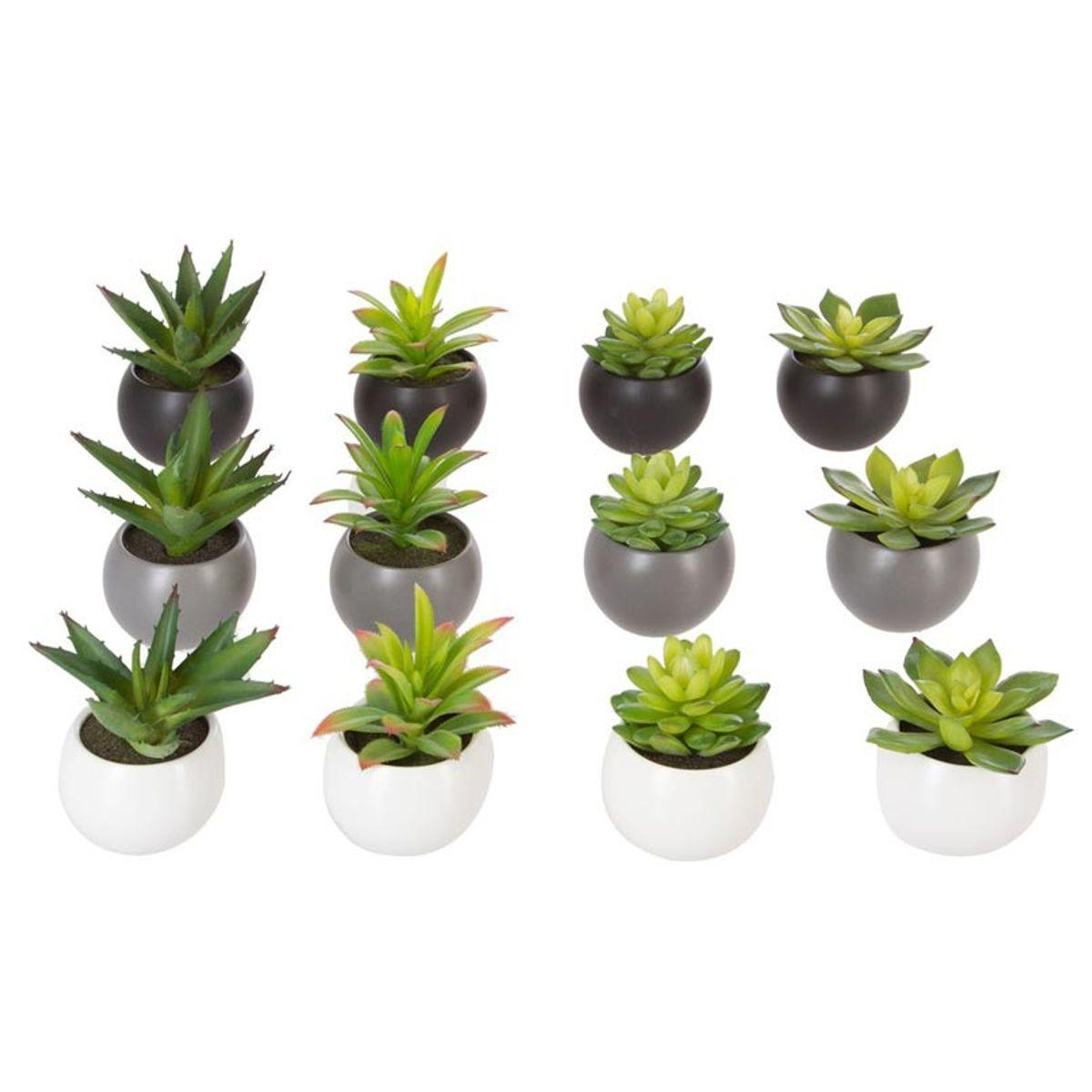 Plante grasse artificielle en pot
